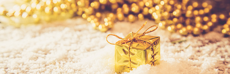 Diamond Holidays - Festive Breaks