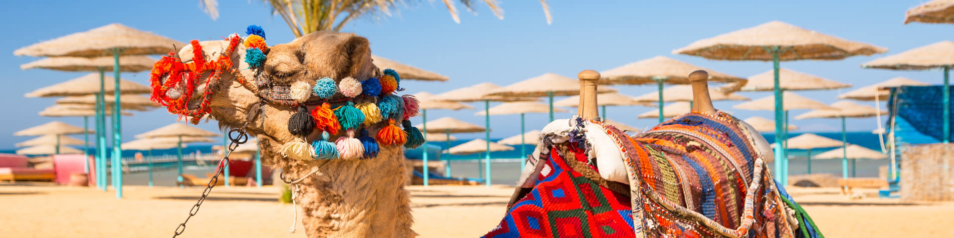 Hurghada Holidays Specialists