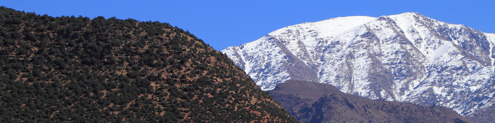 Atlas Mountains Holidays Specialists