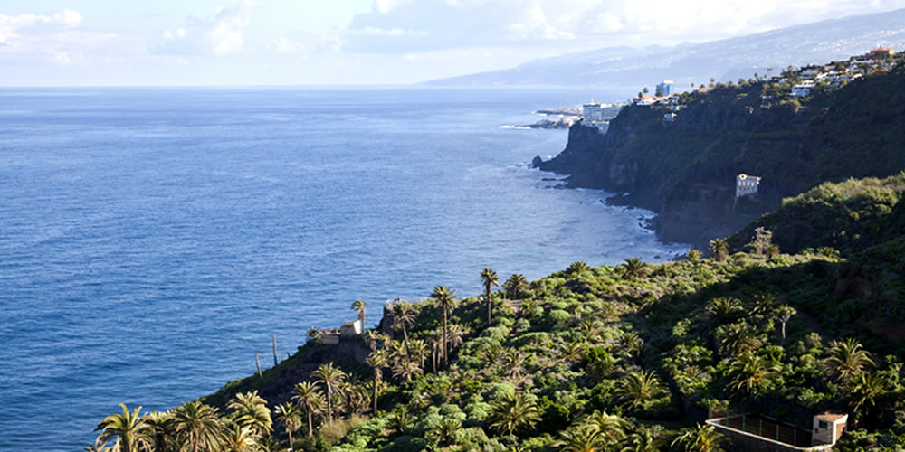 Los Realejos in Tenerife