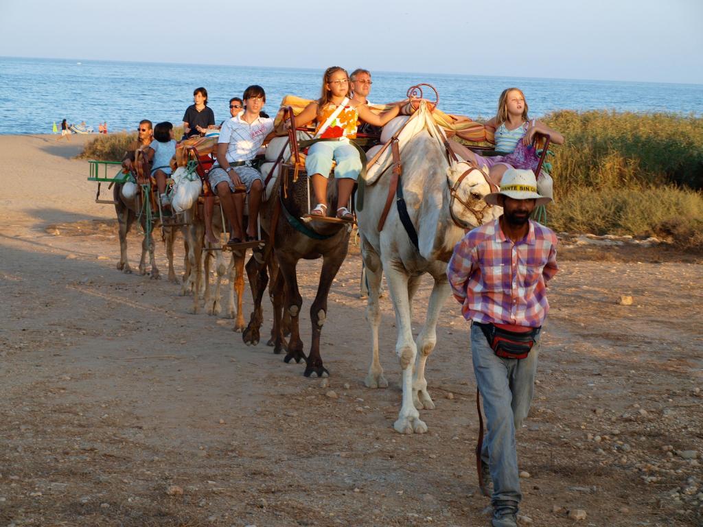 Camel ride in Mojacar