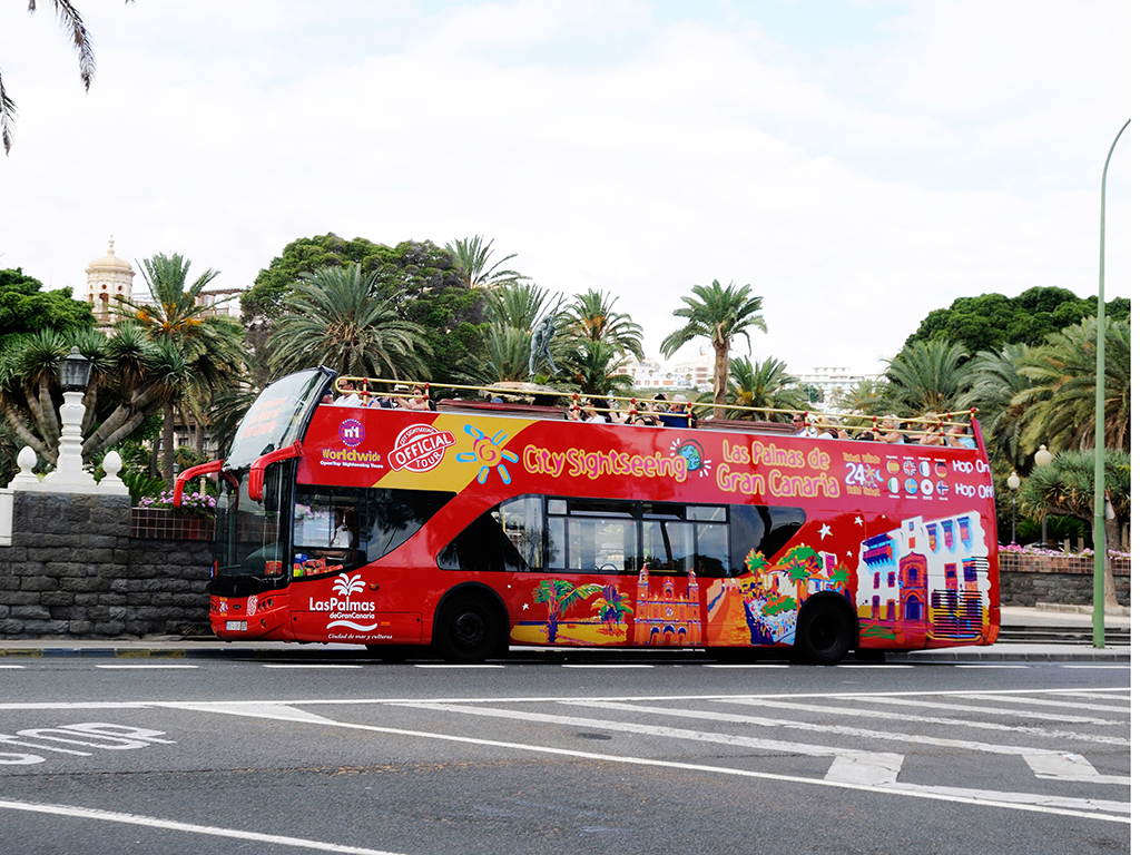 Sightseeing bus tour