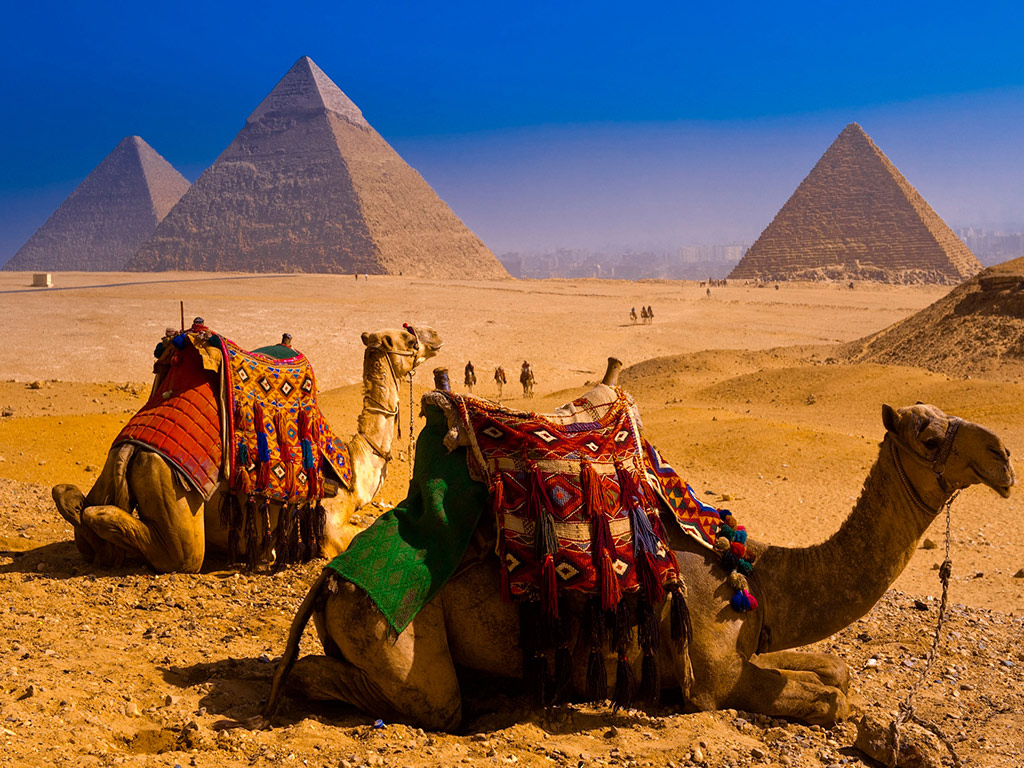 Cairo flight and tour
