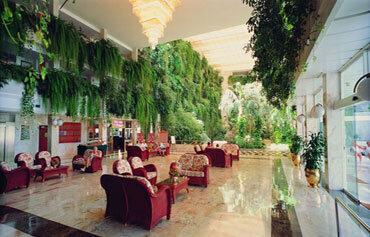 Hotel Vulcano