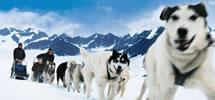 Alaska, Canada & NewEngland