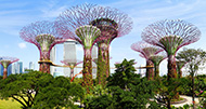 Singapore & Southeast Asia