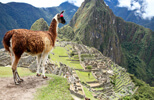 South America escorted tours