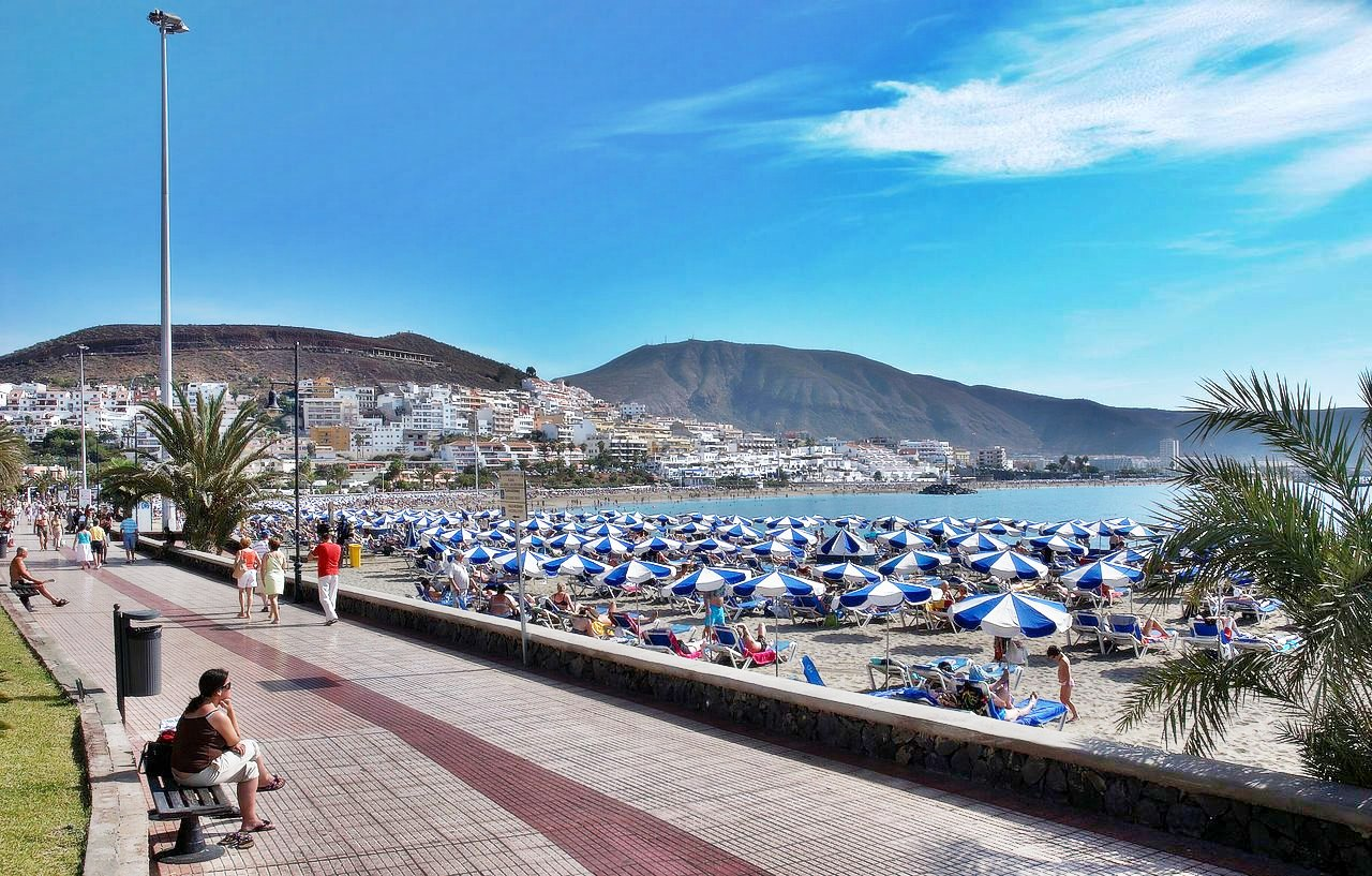 Christmas holiday deals canaries