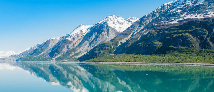 Cruise1st Alaska Cruises