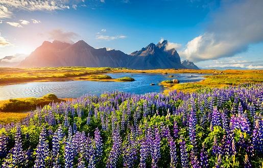 Iceland and British Isles